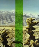 desertpainting1.jpg - 190 x 160 cm oil tempera on canvas 2006 /12  Barbara Wolters copyright