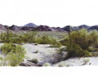 tucson.jpg - 135 x 160 cm  oil tempera on canvas  2006                     foto: Barbara Wolters - copyright