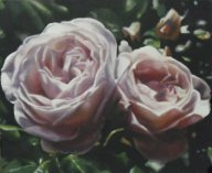 2-roses.jpg - 50 x 60 cm   oil tempera on canvas  2009             Foto : Barbara Wolters- copyright